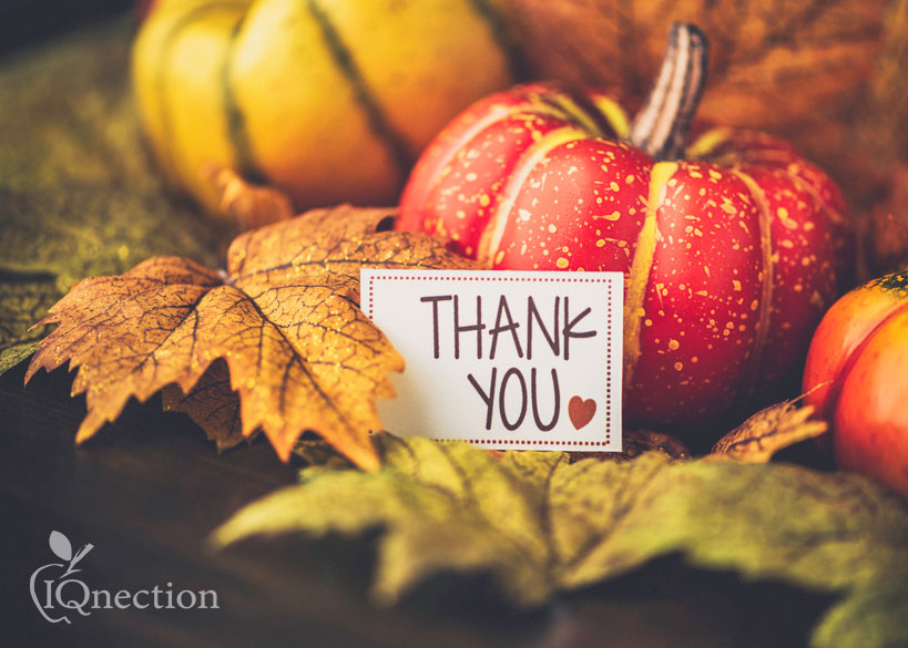 Giving Thanks for Our Clients and Our Community
